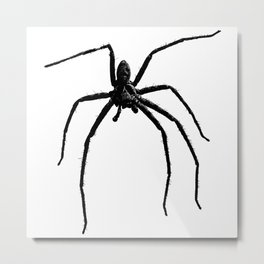 Scary big spider Metal Print
