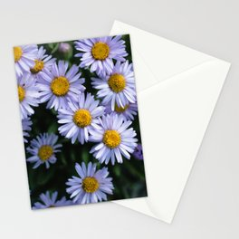 Plant Patterns - 𝘌𝘳𝘪𝘨𝘦𝘳𝘰𝘯 sp. Stationery Cards
