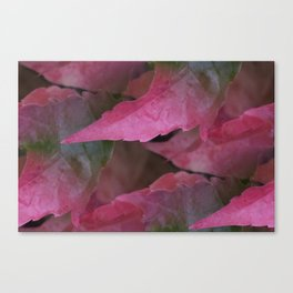 fall is coming -6- Canvas Print