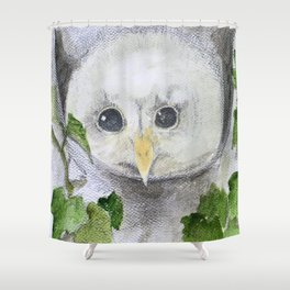 Baby Owl Shower Curtain