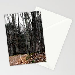 Chasing Autumn Stationery Cards