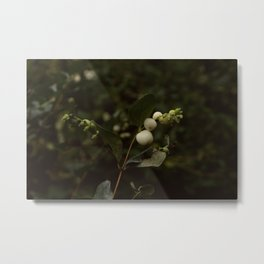 Ghostberries Metal Print