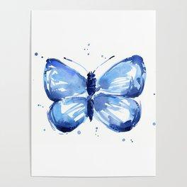 Butterfly Watercolor Blue Butterflies Poster