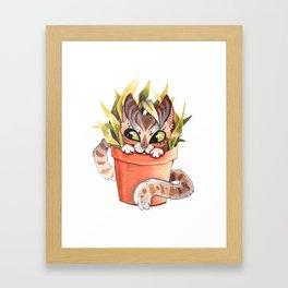 Cat Plant  Framed Art Print