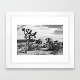 Black and White Joshua Tree National Park Framed Art Print
