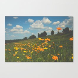 Dreaming in a Summer Field Canvas Print