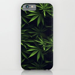 Weed leafs - Cannabis field iPhone Case