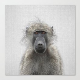 Baboon - Colorful Canvas Print