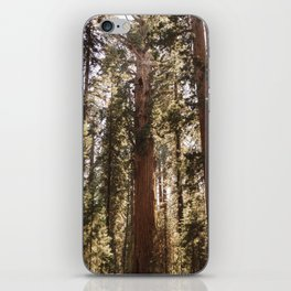 Sequoia National Park XIV iPhone Skin