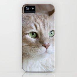 Rusty iPhone Case