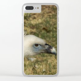 Griffon vulture Clear iPhone Case