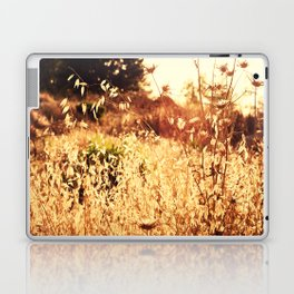 The Golden Hour Laptop & iPad Skin