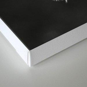 pods 2017 Canvas Print