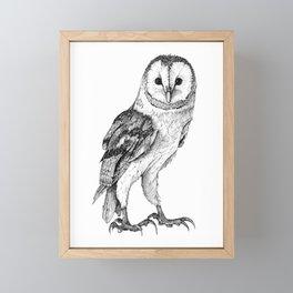 Barn Owl - Drawing In Black Pen Framed Mini Art Print