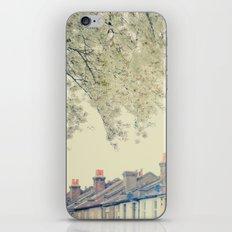 Spring 03 iPhone & iPod Skin