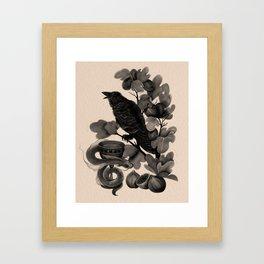 Corvus (Dark Familiars Series #3) Framed Art Print