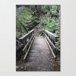 Crossed Canvas Print
