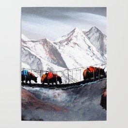 Herd Of Mountain Yaks Himalaya Poster