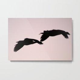 Flying Ducks Metal Print
