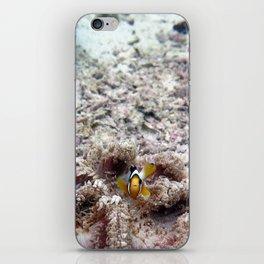 Clownfish iPhone Skin