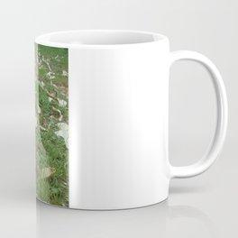 Spring of rabbit Coffee Mug