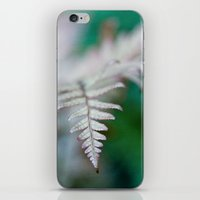 fern iPhone & iPod Skins featuring fern by Bonnie Jakobsen-Martin
