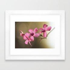 Dainty Pink Framed Art Print