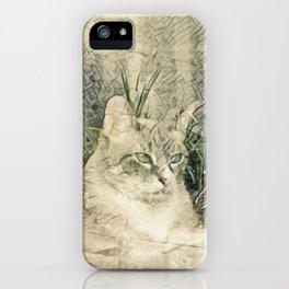 Spirit Cat II iPhone Case