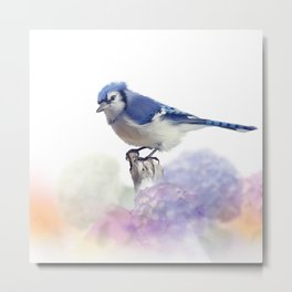 Blue jay in Flower garden,watercolor painting on white background Metal Print
