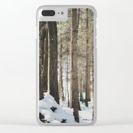 Attersee (14b) Clear iPhone Case
