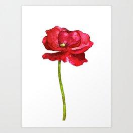 Ink Poppy Painting (Original Artwork) Art Print