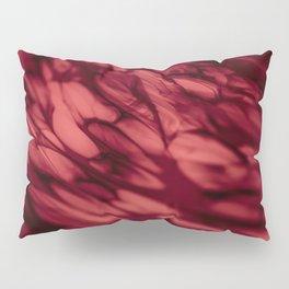 Esoteric Pillow Sham