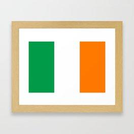 Flag of the Republic of Ireland Framed Art Print