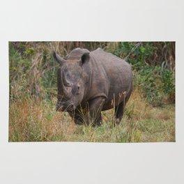 Wild Rhino Rug