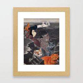 Ol' Cat Canyon Framed Art Print