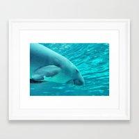 manatee Framed Art Prints featuring Manatee by KINOE