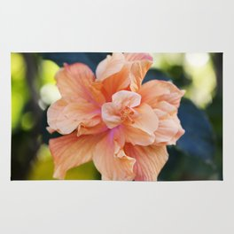 Jane Cowl Tropical Hibiscus Alternate View Rug