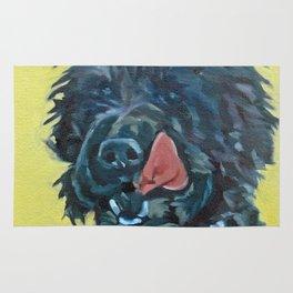 Chester the Black Fluffy Dog Rug
