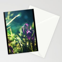 Spring Magic Stationery Cards