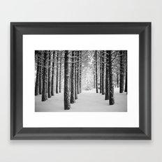 Hometown Pine Framed Art Print