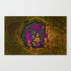 Evolution Stage 3 Canvas Print