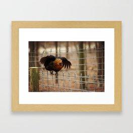 Hen Says Hello Framed Art Print