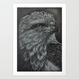 Eagle Eye Pencil Portrait Art Print