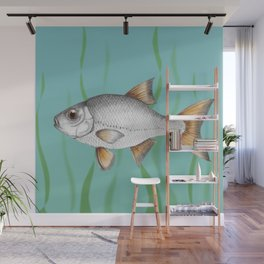 Common roach fish Wall Mural