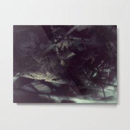 Acrylic Midnight Metal Print