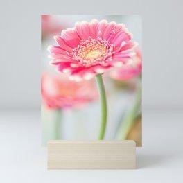 A pink gerbera Mini Art Print