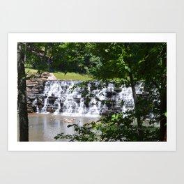 waterfall and trees Art Print