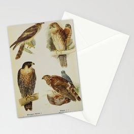 Montagu's Harrier, Peregrine Falcon, Kestrel, Hen Harrier22 Stationery Cards