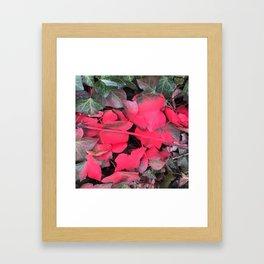 NVSV SPCS_magenta ivy Framed Art Print