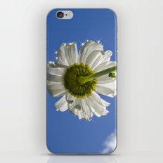 Sparkling Daisy iPhone & iPod Skin